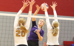 Volleyball ends successful year in bi-district loss